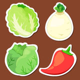 Cute vegetable collection 02 Royalty Free Stock Photography