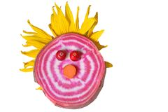 Cute vegetable face with cranberry eyes. Carrot nose and sunflower hair royalty free stock images