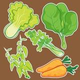 Cute Vegetable set. Cute vector cartoon Vegetable set Royalty Free Stock Photos