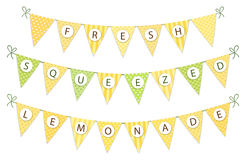 Cute vintage textile green and yellow shabby chic bunting flags for summer festivals, birthday, baby shower. Lemonade play stand etc Royalty Free Stock Photography