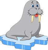 Cute walrus cartoon on ice Stock Photo