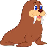 Cute walrus cartoon Royalty Free Stock Images