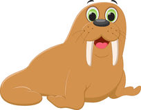 Cute walrus cartoon Stock Image