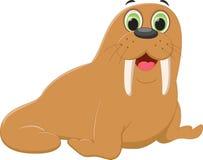 Cute walrus cartoon Stock Image