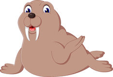 Cute walrus stock illustration. Image of collection ...