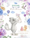 Cute watercolor bohemian baby cartoon roccoon and squirrel animal for kindergarten, woodland deer, fox and owl nursery isolated. Forest illustration for stock illustration