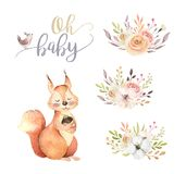 Cute watercolor bohemian baby squirrel animal poster for nursary with bouquets, alphabet woodland isolated forest. Cute watercolor bohemian baby squirrel animal Royalty Free Stock Image