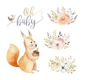 Cute watercolor bohemian baby squirrel animal poster for nursary with bouquets, alphabet woodland isolated forest. Cute watercolor bohemian baby squirrel animal Royalty Free Stock Photo