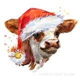 Cute watercolor calf. Baby bull illustration. cattle. farm animal.
