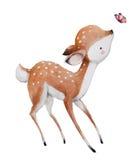 Cute watercolor deer Royalty Free Stock Images