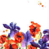 Cute watercolor flower background with poppies and irises in bri. Ght colors. Invitation. Wedding card. Birthday card royalty free illustration