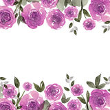 Cute watercolor flower frame. Background with purple roses. Invitation. Wedding card. Birthday card Royalty Free Stock Photos