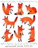 Cute watercolor foxy set Stock Photos
