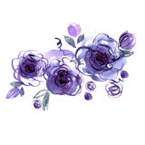 Cute watercolor hand painted blue roses. Stock Photo
