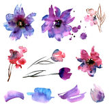Cute watercolor hand painted flower Royalty Free Stock Photography