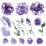 Cute watercolor hand painted flower Royalty Free Stock Photos