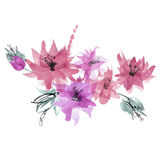 Cute watercolor hand painted flowers. Royalty Free Stock Images