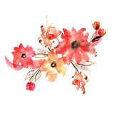Cute watercolor hand painted flowers. Royalty Free Stock Photos
