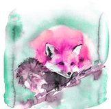 Cute watercolor illustration with pink red fox. Fluffy beast sleeps sweetly stock illustration