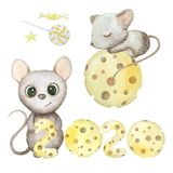 Cute watercolor rat isolated on white background. Mouse symbol 2020 new year. Cute hand drawn watercolor rat isolated on white background. Mouse symbol 2020 new vector illustration