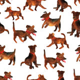 Cute watercolor seamless pattern with dogs. Illustration with pe Stock Image
