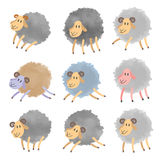 Cute watercolor sheeps set. Vector illustration isolated on white Royalty Free Stock Photo