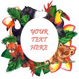 Cute watercolor tropical animals - oval frame stock illustration