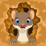 Cute weasel out of the hole. Vector illustration of cute weasel out of the hole Stock Photo