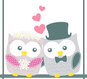 Cute wedding owls couple Stock Images