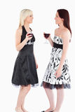 Cute well-dressed women drinking red wine Royalty Free Stock Photos