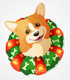 Cute Welsh Corgi dog and Christmas Wreath, cartoon  illustration Stock Photo