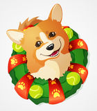 Cute Welsh Corgi dog and Christmas Wreath, cartoon illustration. Cute Welsh Corgi dog and Christmas Wreath with tennis ball toys, hand drawn illustration vector illustration