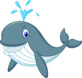 Cute whale cartoon Royalty Free Stock Photos
