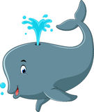Cute whale cartoon Stock Images