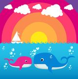 Cute Whale Character Royalty Free Stock Image