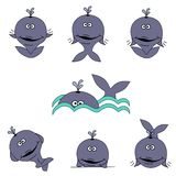 Cute Whale Set Royalty Free Stock Image