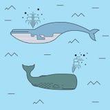Cute Whales. Marine / Sea / Ocean Vector Print. Vector Royalty Free Stock Photos