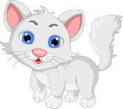 Cute white cat cartoon expression Stock Photo