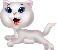 Cute white cat cartoon running Stock Photos