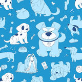 Cute White Dogs on a blue background. Royalty Free Stock Images