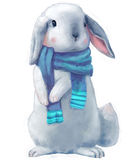 Cute white hare Royalty Free Stock Photography