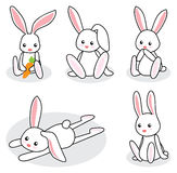 Cute white little bunny. In different poses Royalty Free Stock Photos