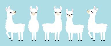 Free Cute White Llama Vector Illustration Royalty Free Stock Image - 128547736