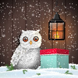 Cute white owl with colorful christmas gift box and shining lantern, holiday theme, illustration. Cute white owl with colorful christmas gift box and shining Stock Photography