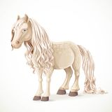 Cute white pony horse Royalty Free Stock Image