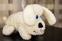 Cute white puppy soft toy. For childrens playing Stock Photo
