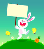 Cute white rabbit holding sign Royalty Free Stock Photos
