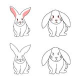 Cute White Rabbit isolated on White Background. Vector Illustration.  Royalty Free Stock Photo