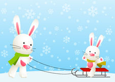 Cute white rabbits Royalty Free Stock Photography