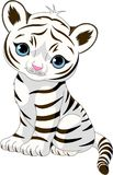 Cute white tiger cub stock illustration